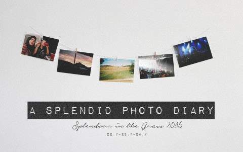 a splendid photo diary